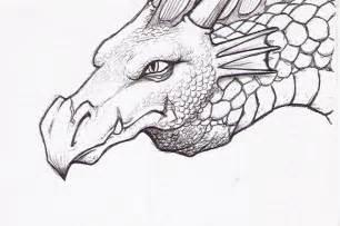 dragon sketch by ersbethshadowsong on deviantart
