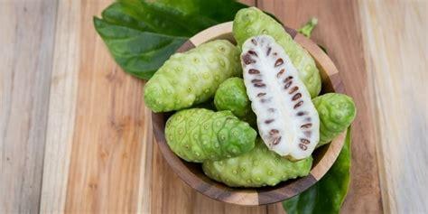 Cari Obat Maag Herbal noni juice obat maag alami atau herbal maag indonesia