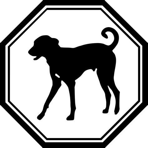 when can puppies start water zodiac