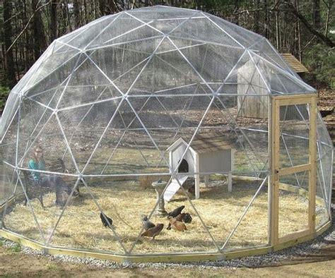 build  chooks  geodesic chicken tractor diy