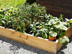For most experienced gardener or the novice raised garden beds take