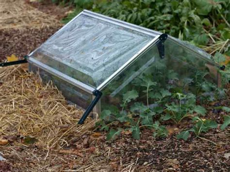 Cold Frame Gardening by Vegetable Garden Cover For Winter Protection Veggie