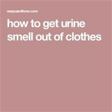 how to get pee smell out of bathroom 1000 ideas about urine smells on pinterest steam