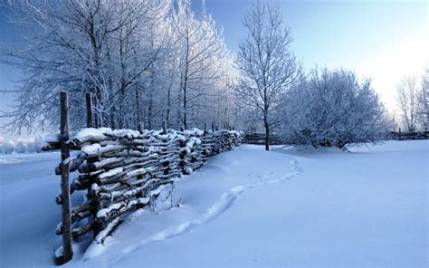 wallpaper free snow scenes winter snow scenes wallpaper 183