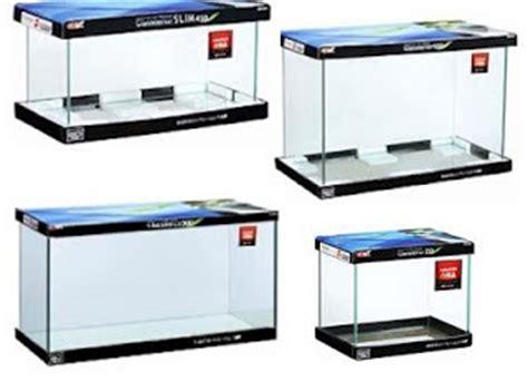 Lu Hias Di Ace Hardware tips dasar memulai memelihara ikan hias di akuarium