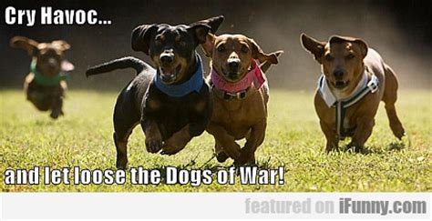 let the dogs of war cry havoc and let the dogs of war ifunny