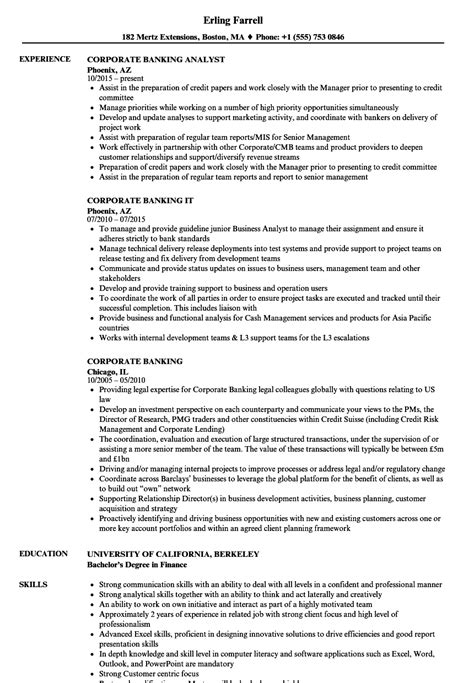 finance manager resume examples printable planner template