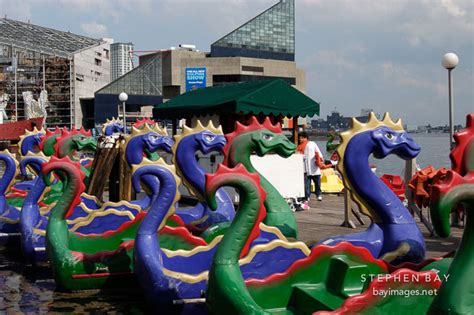 paddle boats in baltimore photo paddle boats baltimore maryland usa