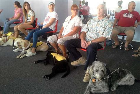 guide dogs of america m m youth mentor program turning despair to h o p e