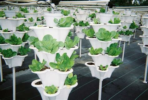 Vertical Vegetable Gardening Systems 17 Best Images About Vertical Gardening 101 On