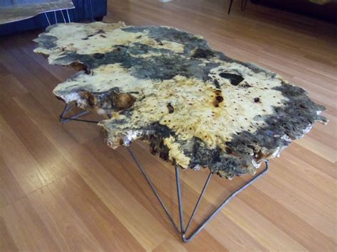 live edge table with glass and poplar burl timber salvabrani crafted live edge buckeye burl coffee table with cats cradle legs by ozma design