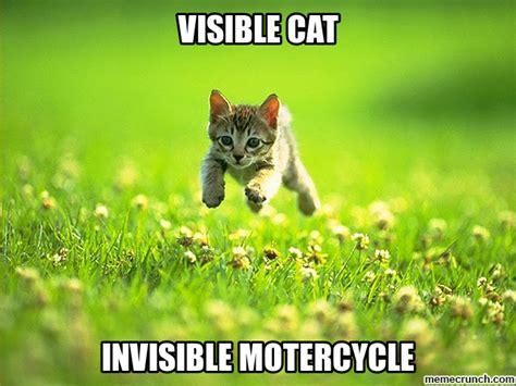 Invisible Cat Meme - invisible bike cat