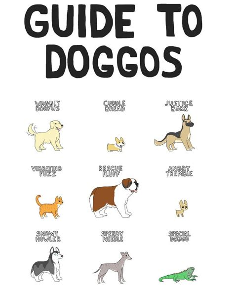Guide To Memes - guide to doggos neatorama