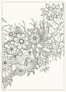 secret garden coloring book by johanna basford kleuren geheime tuin on secret gardens tuin