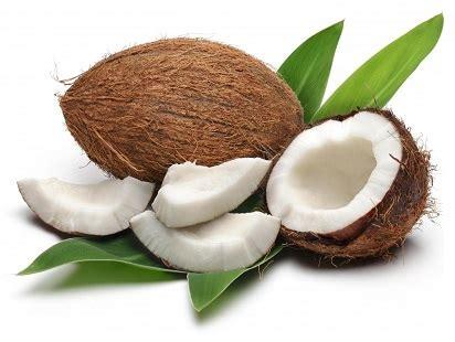 interno della noce latte di cocco la cucina di