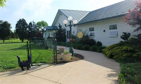 creature comforts inn creature comfort inn home the shenandoah valley s