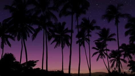 purple sky sunset wallpaper nature  landscape
