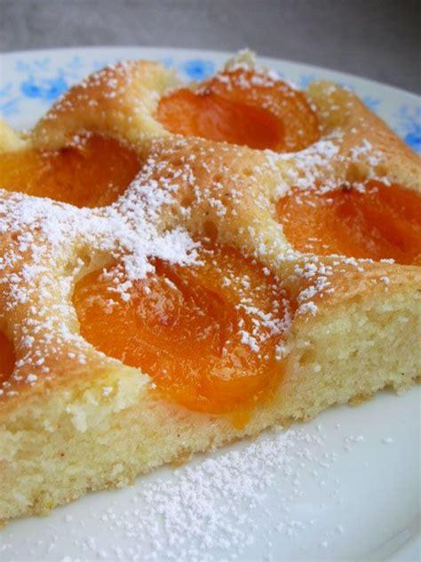 aprikosen kuchen aprikosenkuchen vom blech european recipe