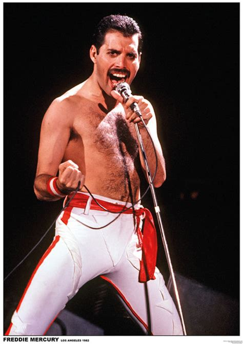 Dog Doormat Queen Freddie Mercury Poster Sold At Europosters