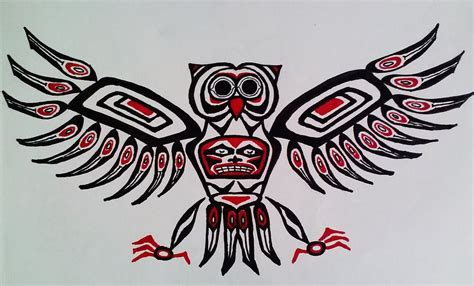haida owl drawing by maria hatefi