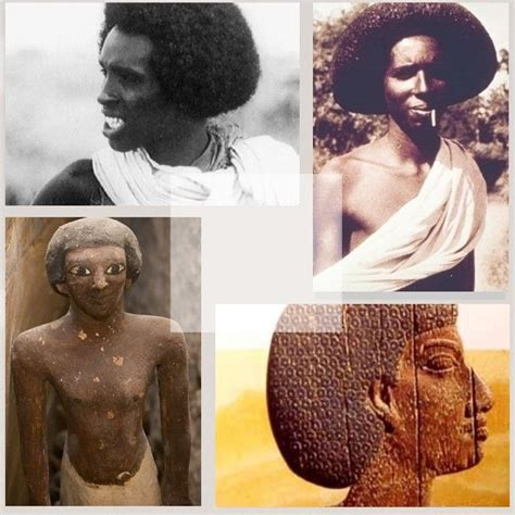 information on egyptain hairstlyes for men and women 10 arguments that prove ancient egyptians were black
