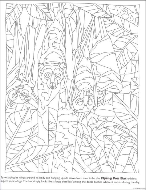 Camouflage Coloring Pages Camo Free Coloring Pages On Art Coloring Pages by Camouflage Coloring Pages