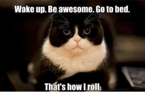 yes thatsawesom memes thats awesome up be awesome goto bed that s how i roll meme on me me