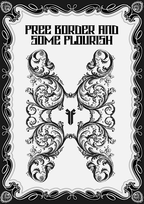massive collection  vintage vector graphics floral