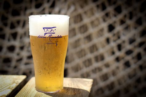bicchieri birra plastica bicchieri birra smoothie policarbonato personalizzati