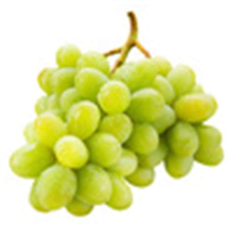 can dogs eat green grapes fruits vegetables dogs can and can t eat american kennel club