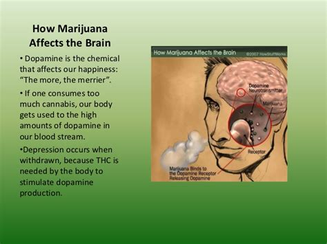 Does Marijuana Affect Detoxing From Parasites by Cannabis And Teenagers