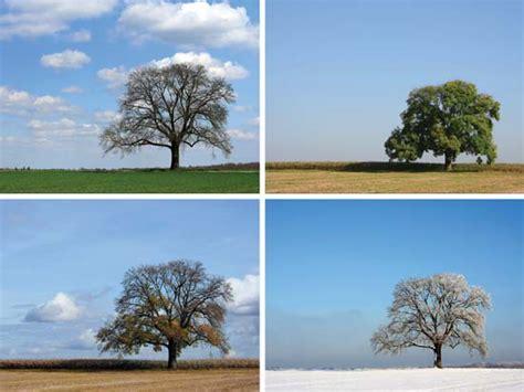164 best 4 seasons winter season meteorological division britannica