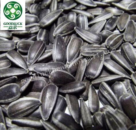 black oil sunflower seeds ton price buy sunflower seeds