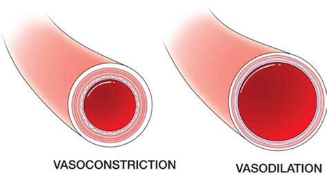 alimenti vasodilatatori vasodilators