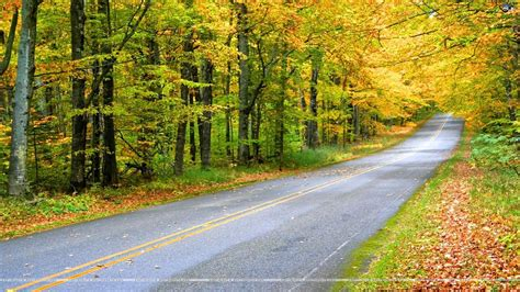 beautiful road beautiful road beautiful road wallpapers best wallpapers