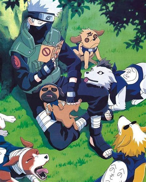 kakashi dogs 153 best kakashi images on