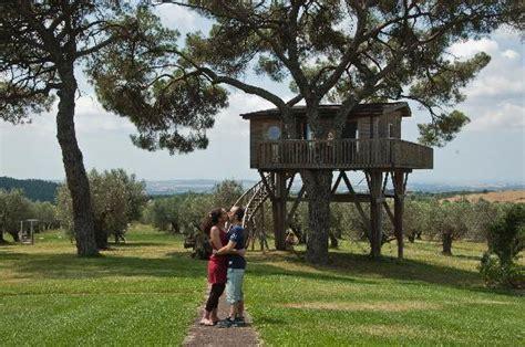 la casa sull albero viterbo la casa sull albero picture of agriturismo la piantata