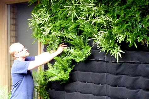 Screen Wall Vertikultur jual bahan kantong vertical garden atau vertikulture