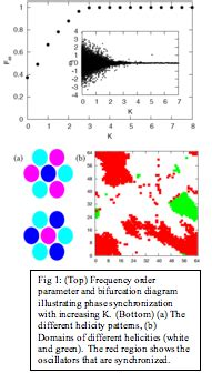 pattern formation in chemical systems report pattern formation in spatially structured active