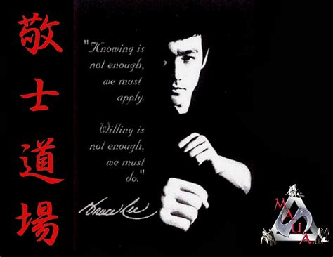 martial arts cool martial arts hd wallpapers 2015 photosforwallpapers