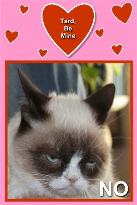 grumpy cat valentines discover and save creative ideas