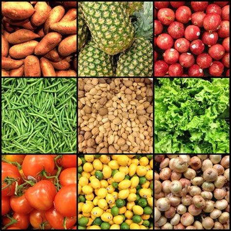 whole grains vegetables and fruits are rich sources of jcruz661 8 hs bio chemistry at the cellular level lesson 2