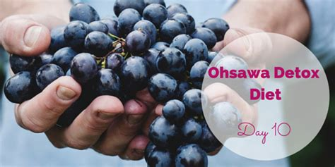 The 10 Ohsawa Detox Diets And What They Cure ohsawa detox diet day 10