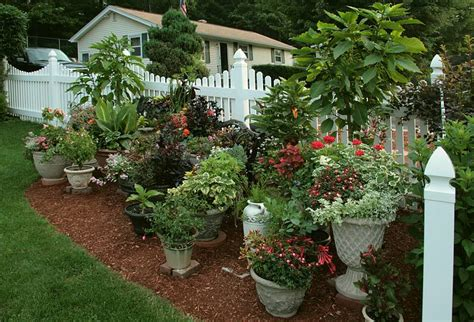 Potted Gardens Ideas Container Gardening For The Renter Ahrn