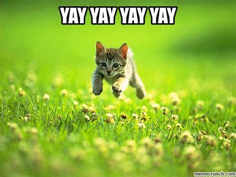 Yay Meme - yay yay yay yay