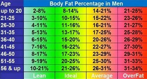 healthy fats percentage health tips 4 ways to measure your
