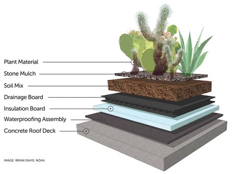 living arc green roofs roofing