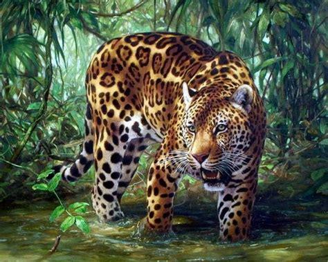 imagenes jaguares selva im 225 genes arte pinturas paisajes con tigres