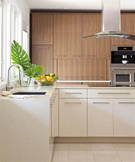 Organic Kitchen Design Organic Design Modern Kitchen And Bathroom Design Ideas