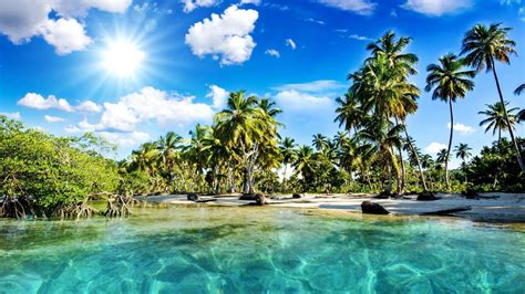 Kerala Lagoon With Palms, India Wallpaper   Wallpaper